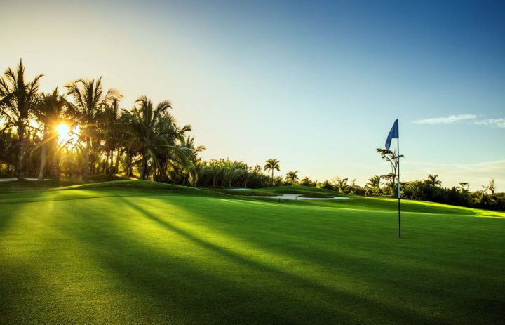 Firecracker_Golf 5